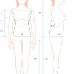 女子の体型を確認するコツ